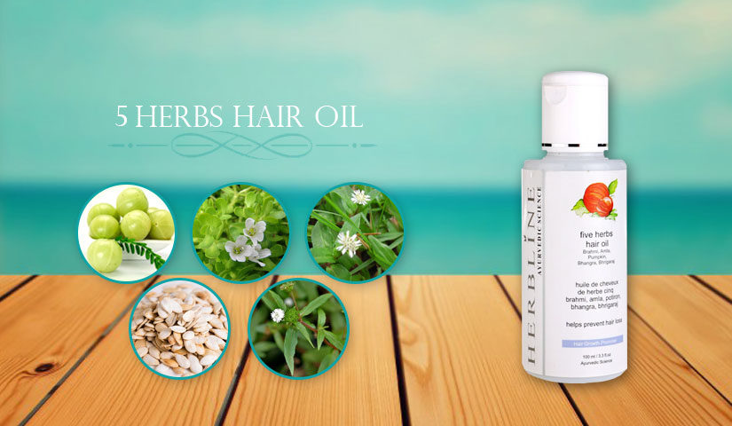 5fd9e0804287 5 Herbs Hair Oil - Bring Healthy Hair Back - Herbline